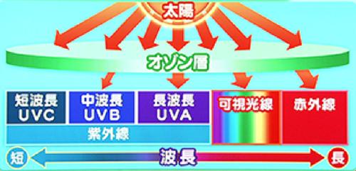 紫外線と波長の関係図
