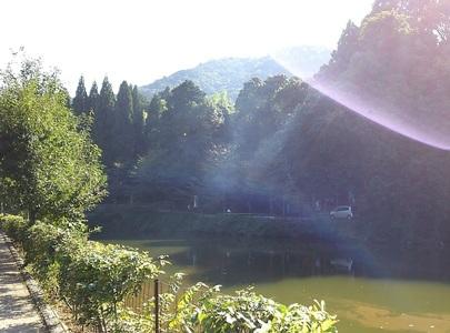 御髪神社と小倉池